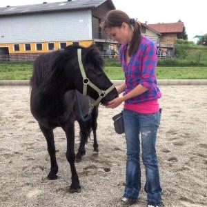 Rosa Pferd
