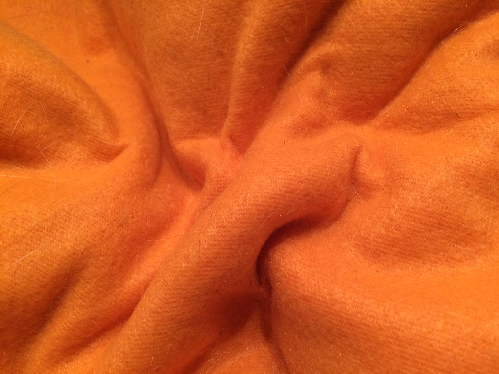 Wie farben auf unsere pferde wirken   orange   tash horseexperience