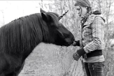 Einhorn Pony