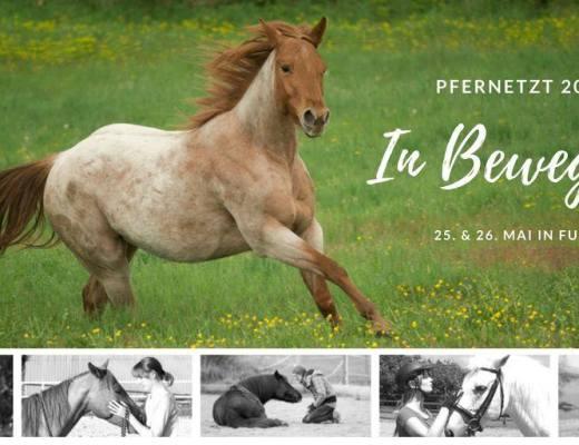 Pfernetzt - Das Event für Pferdemenschen