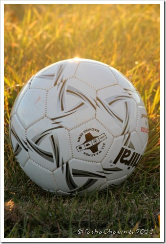 Day 152 - Soccer Ball