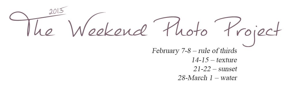 The Weekend Photo Project: Februaryt promts