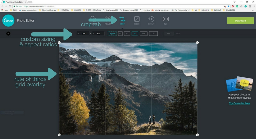 where do i find the cropping tool on canva photo editor