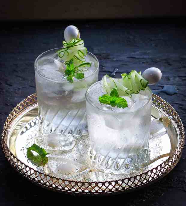 Simple Gin And Tonic Recipe cocktail refreshing summer drink