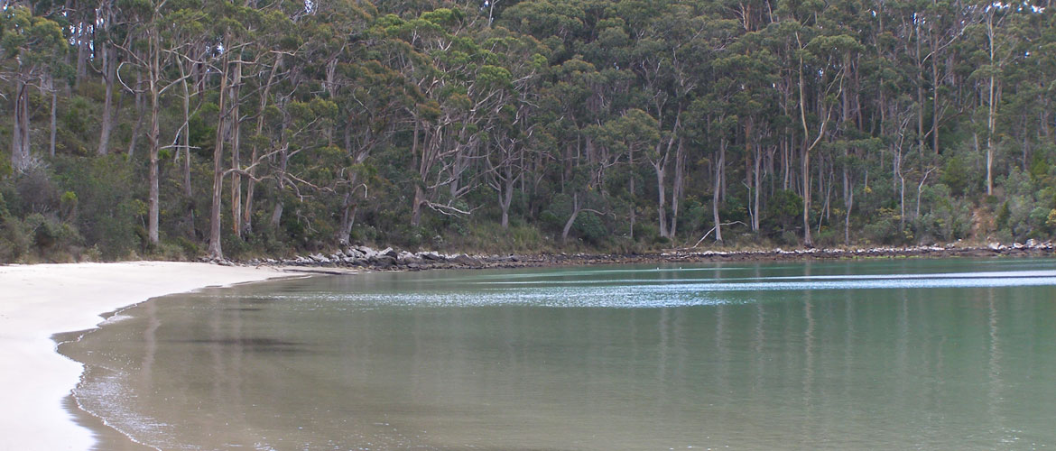 Secluded Beach at Stewarts Bay