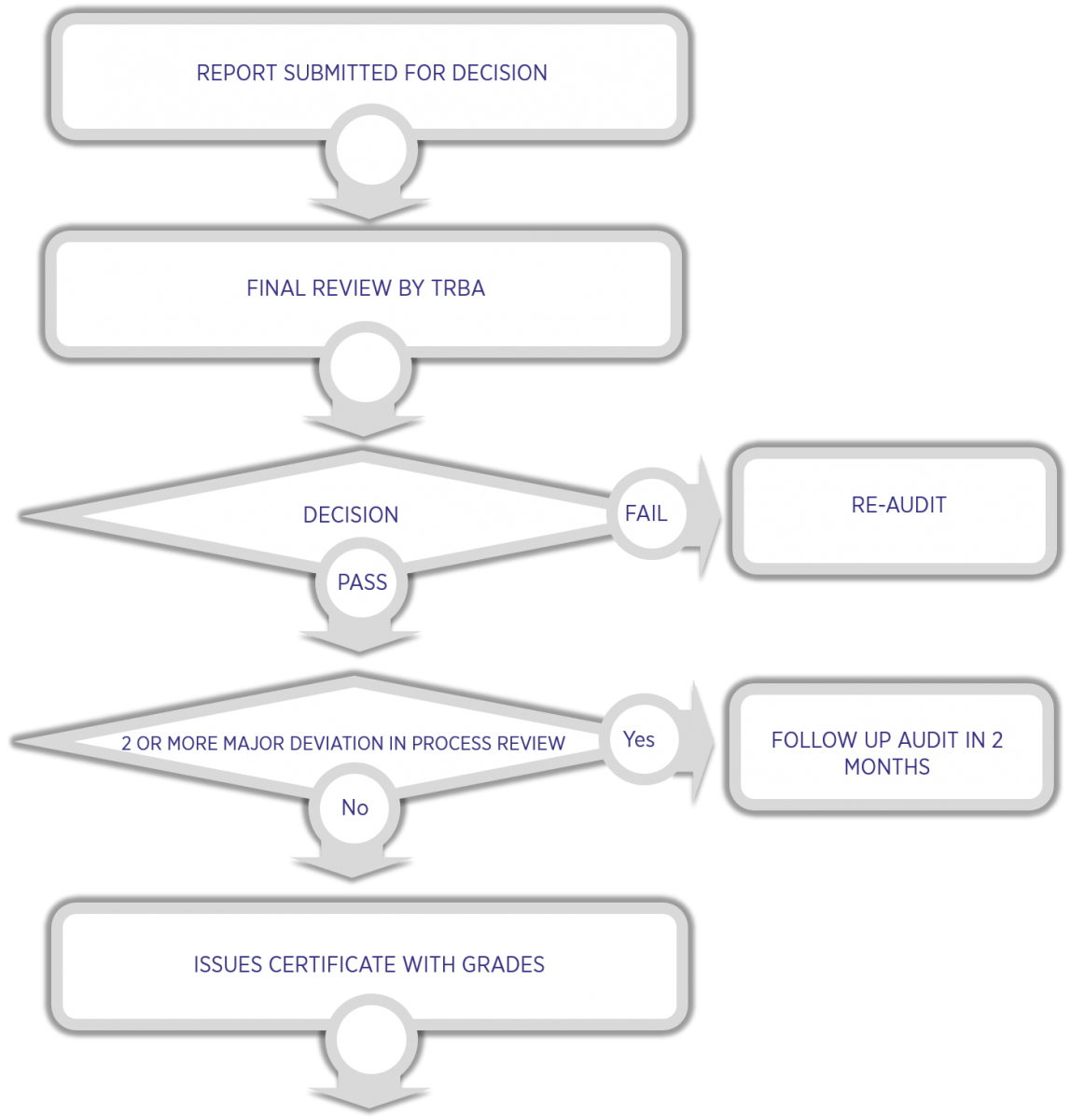 Audit Process Flow Map