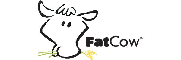 Fatcow web hosting
