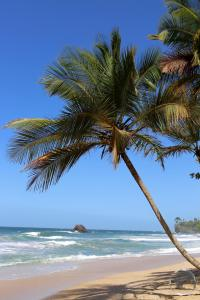 Blanchisseuse Beach on the north coast of Trinidad