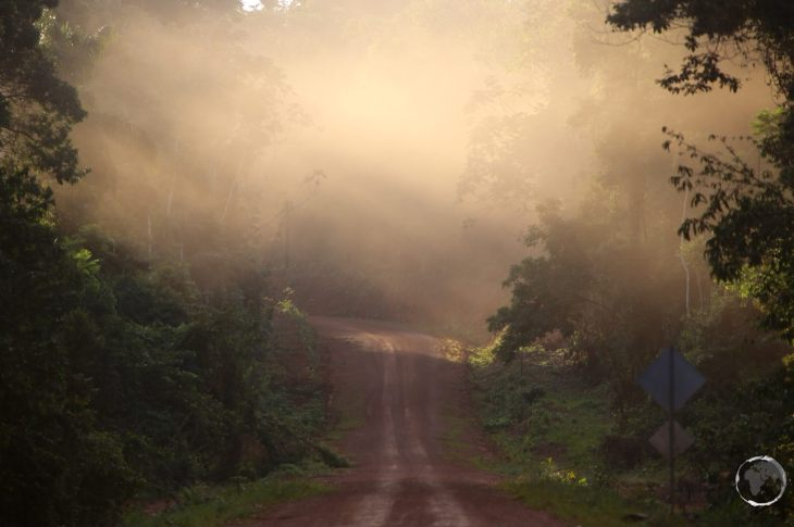 The 'highway' connecting Guyana and Brazil passes through the Iwokrama forest