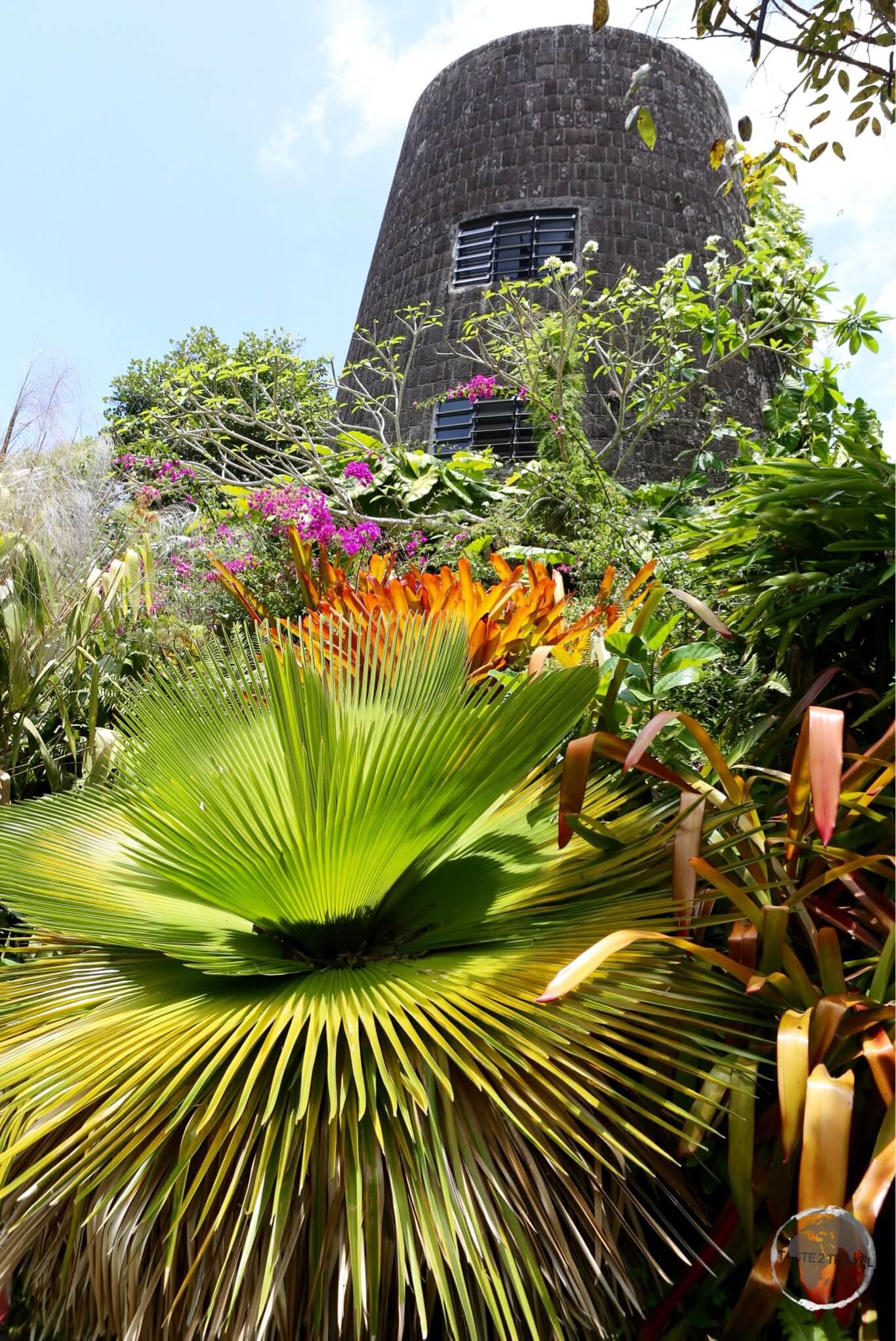 The garden at Golden Rock Inn.