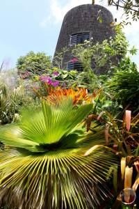 Gardens at Golden Rock Inn