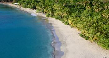 A panoramic view of Brewers Bay, where lush rain forest meets the sea.