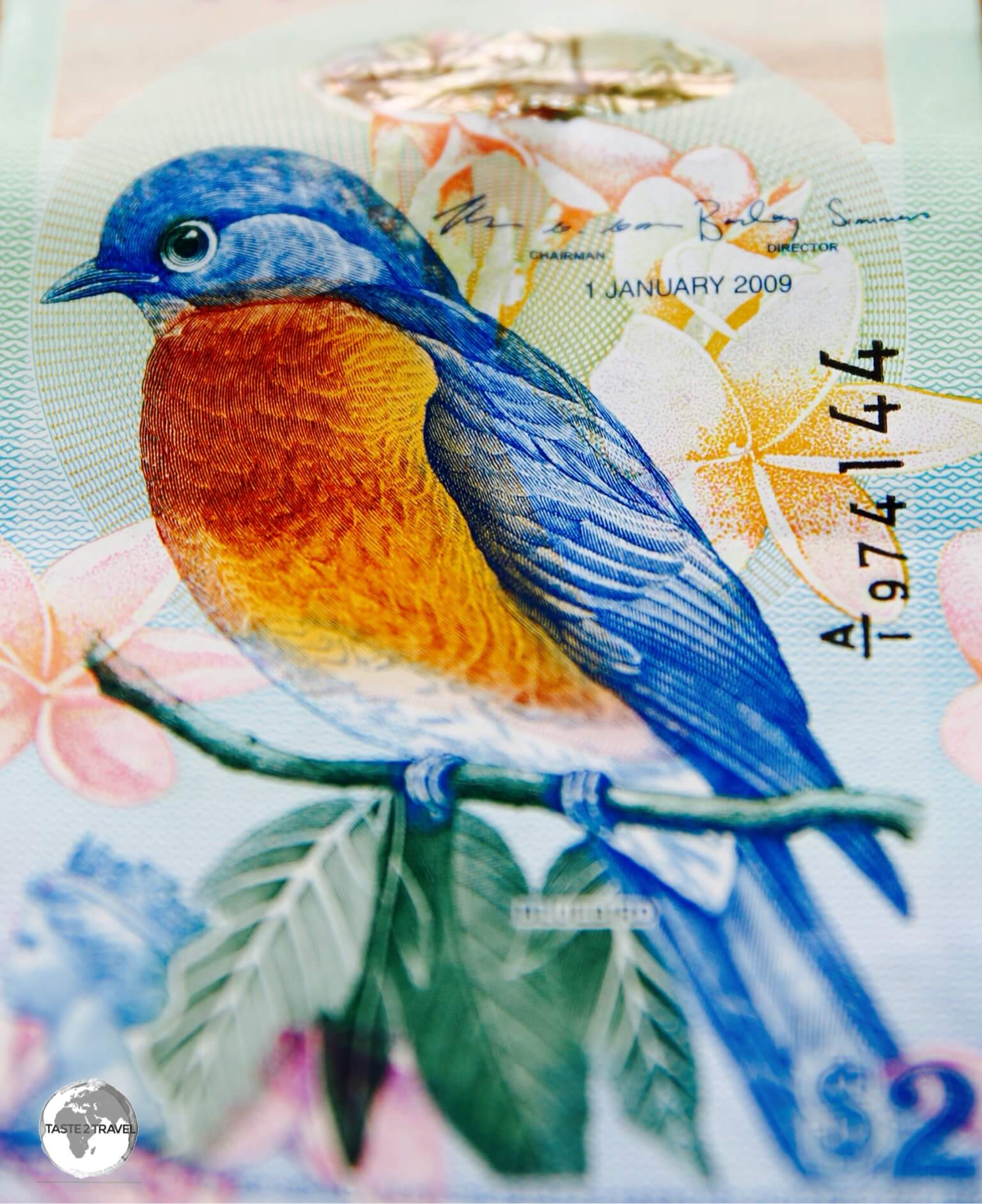 The Bermuda Eastern Blue Bird is featured on the $2 note.