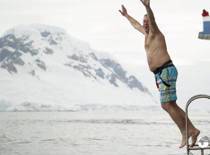 So graceful! The deep, freezing water of Wilhelmina Bay is the perfect place for a Polar Plunge.
