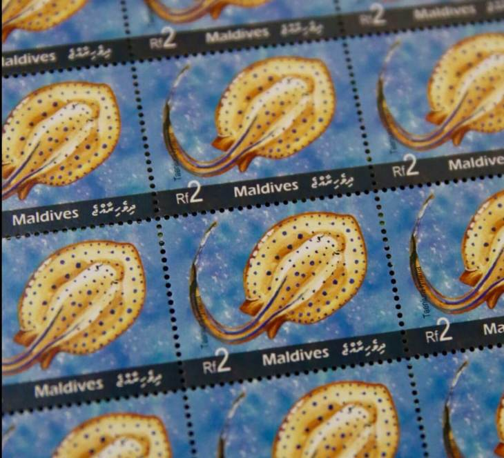 A Maldives stamp issue featuring a Stingray.