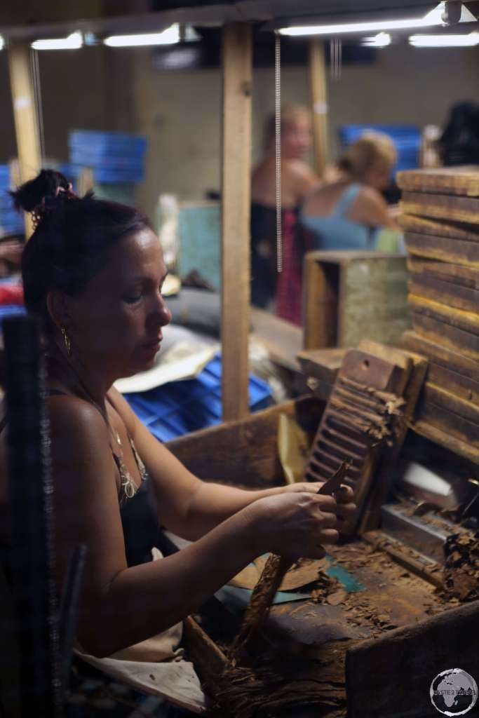 Cigar maker working in a factory in downtown Sancti Spíritus.