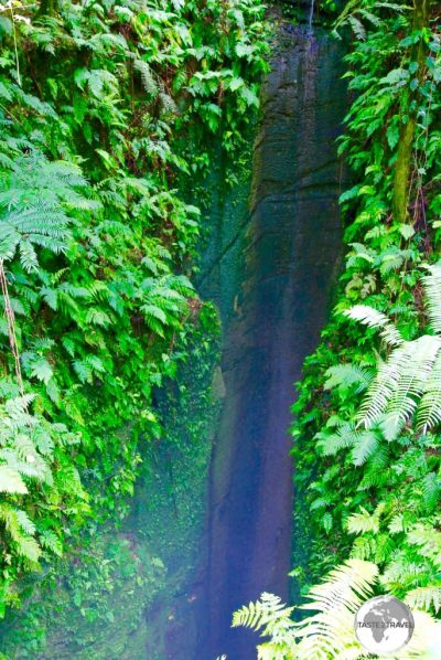 'Ana 'Ahu, a bottomless sink-hole in the middle of the rainforest on 'Eua Island.