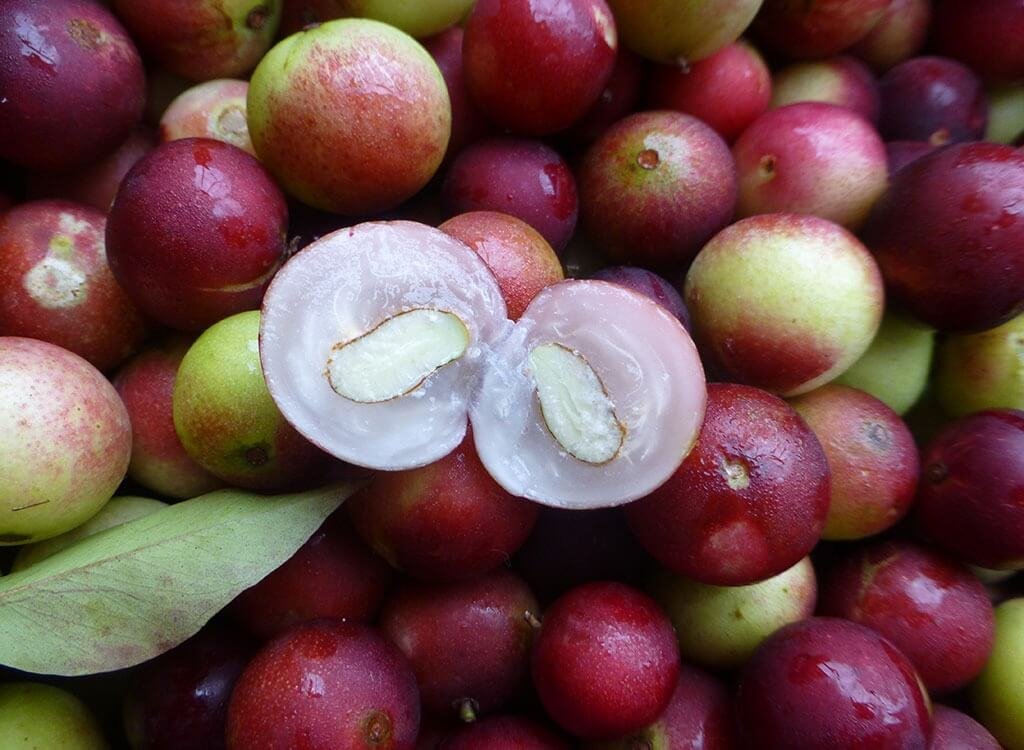 With 2-3% of its weight being vitamin-C, Camu-camu, seen here in the market in Iquitos, is an Amazonian super food, and it also tastes great in a Pisco Sour.