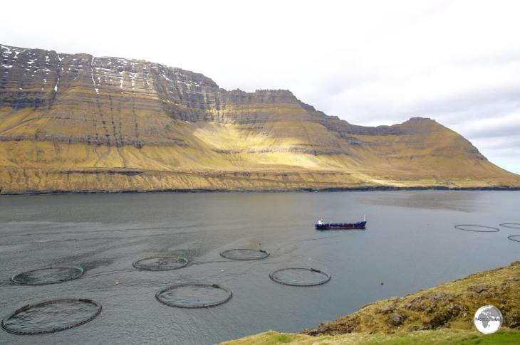 Salmon farming is the main industry on the Faroe Islands with huge farms occupying most Fjords.