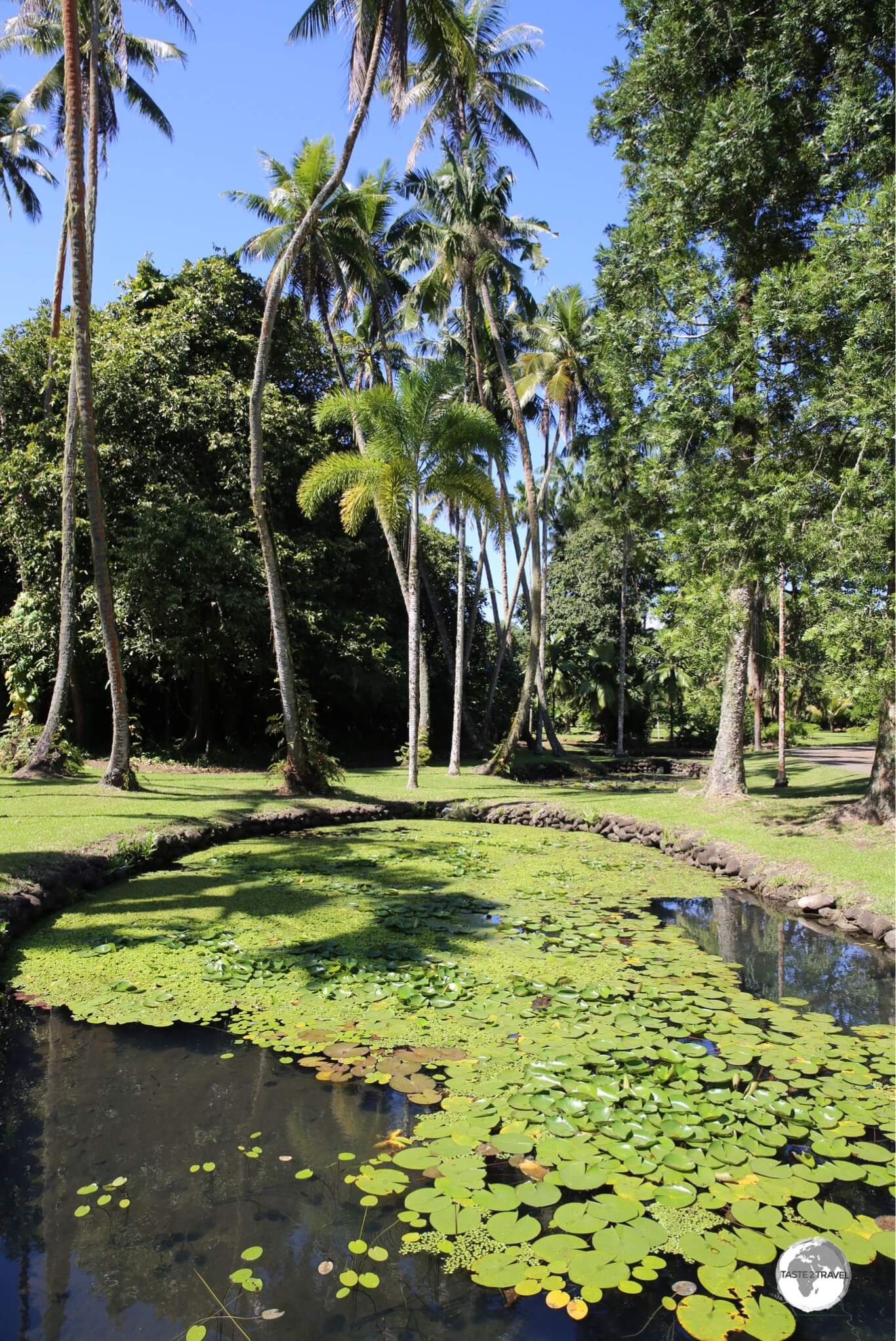 The grounds of the Harrison Smith Botanical Garden.