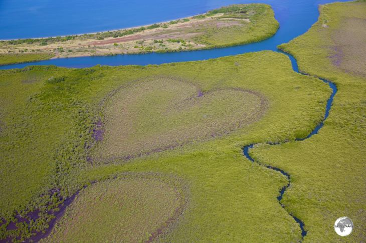 The famous 'Heart of Voh' is a natural heart-shaped bog in the middle of a mangrove swamp.