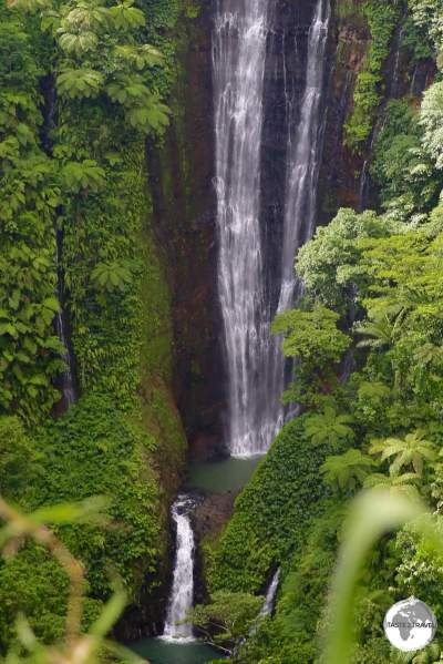 Located on the Cross Island road, the incredible Papapapaitai falls plunge 100 metres into a lush ravine.
