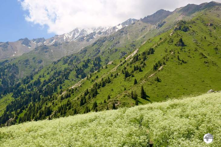Ideal for hiking and day trips, the Tien Shan mountain range on the outskirts of Almaty.