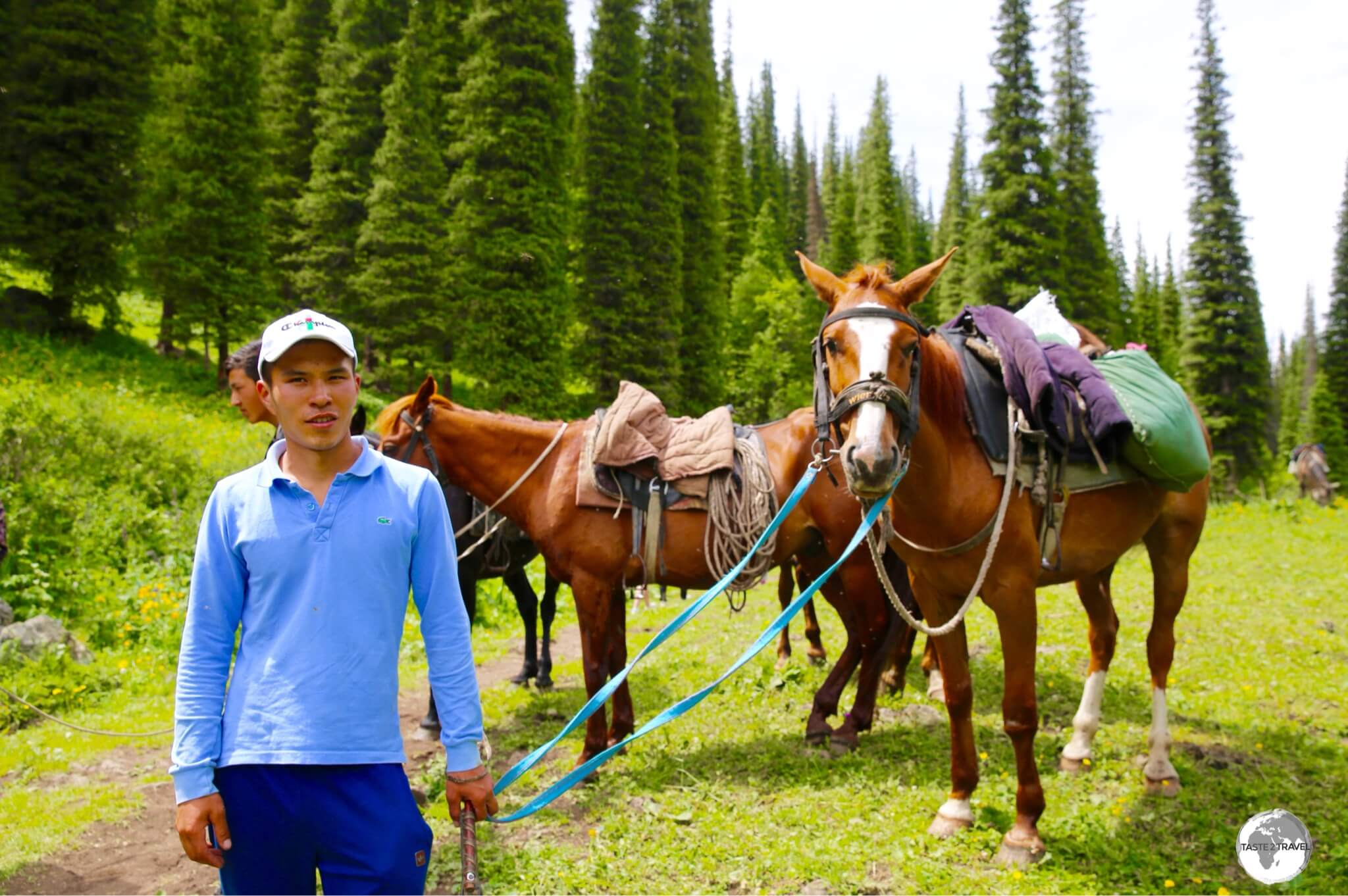 Horses are available for those who don't wish to do the gruelling hike but they are very pushy on the narrow trail.