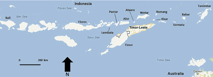 A map of the Lesser Sunda Islands, an Indonesian island chain, with independent Timor-Leste clearly indicated. Source: Wikipedia.