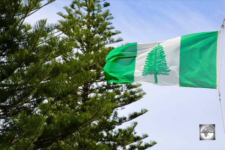 The Norfolk Island flag, fluttering in front of a row of Norfolk Island pines in Kingston.