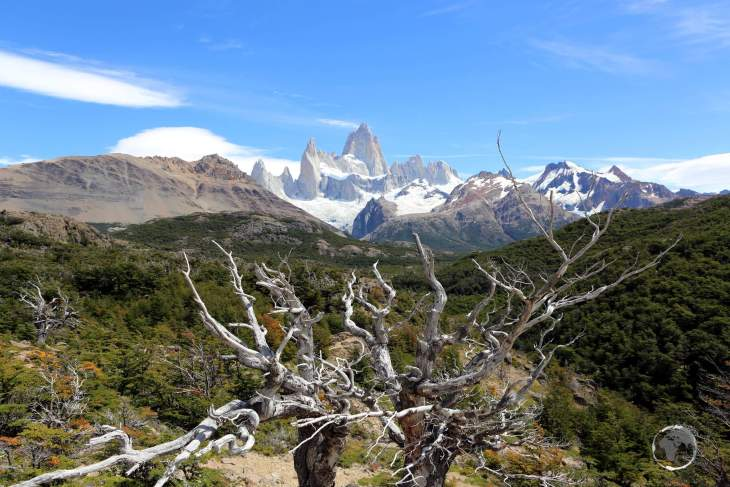 A panorama of Monte Fitz Roy in the Los Glaciares National Park, a highlight of Argentine Patagonia.