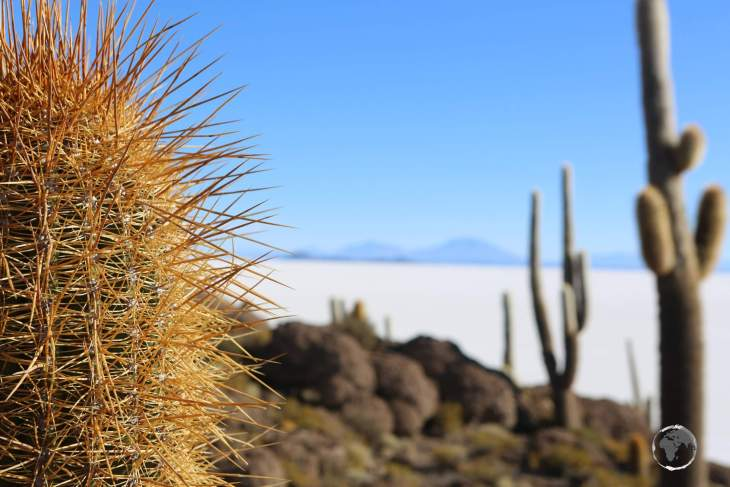 During my visit in September, the average maximum temperature at Salar de Uyuni was around 6 degrees, dropping to around -3 degrees in the evening.