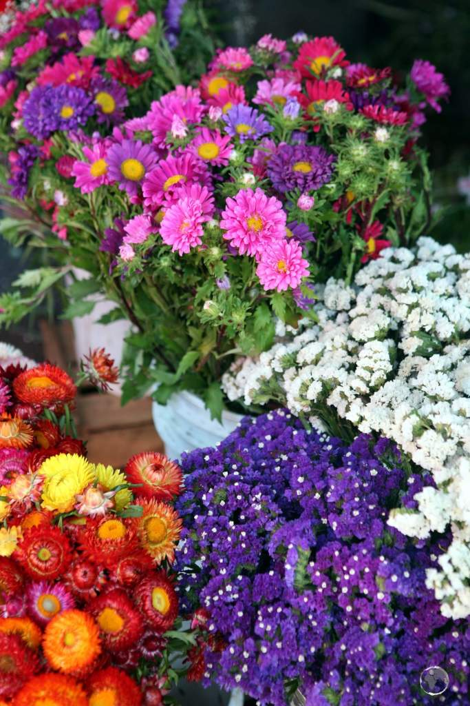 Flowers for sale at Chillán market, a major city in central Chile which is located 400 km south of the capital, Santiago.