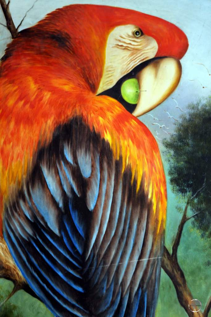 A painting of a Macaw adorns a cafe wall in Cartagena.