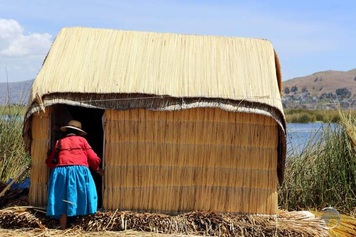 Everything in the world of the Uros people, from their floating islands to their homes, is constructed from dried Totora reeds, which grow along the shoreline of Lake Titicaca.