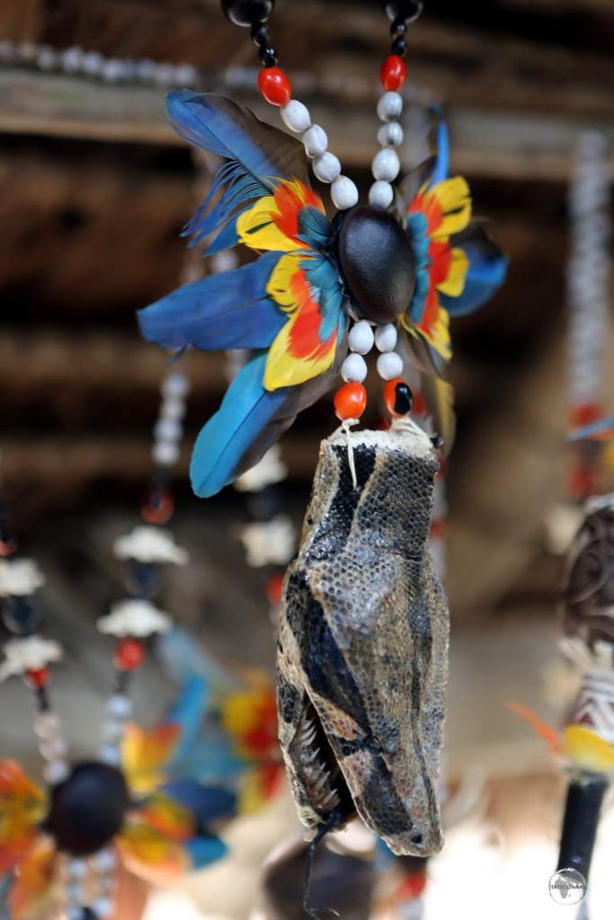 A different type of souvenir - an Anaconda head necklace for sale at a Yagua Indigenous Indian village near Iquitos, Peru.