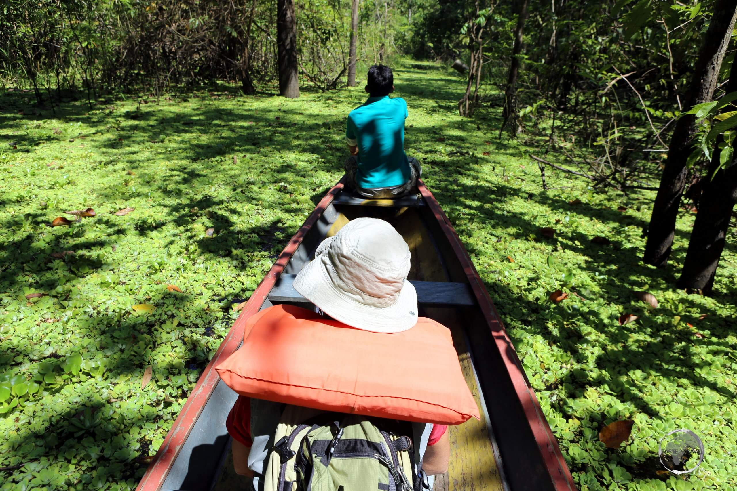 Our kayak transport, which took us from the Amazon river through a large swamp to the Marasha Nature Reserve, which is located in Peru, across the river from Colombia.