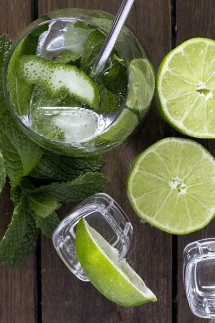 Keto Mojito - Low Carb, Sugar-free & Gluten-free Drink