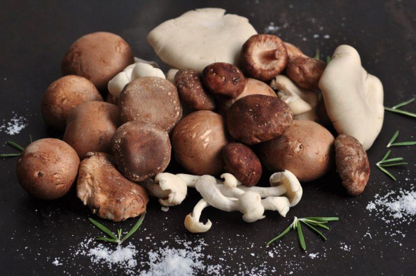 Mushrooms_tastecelebration