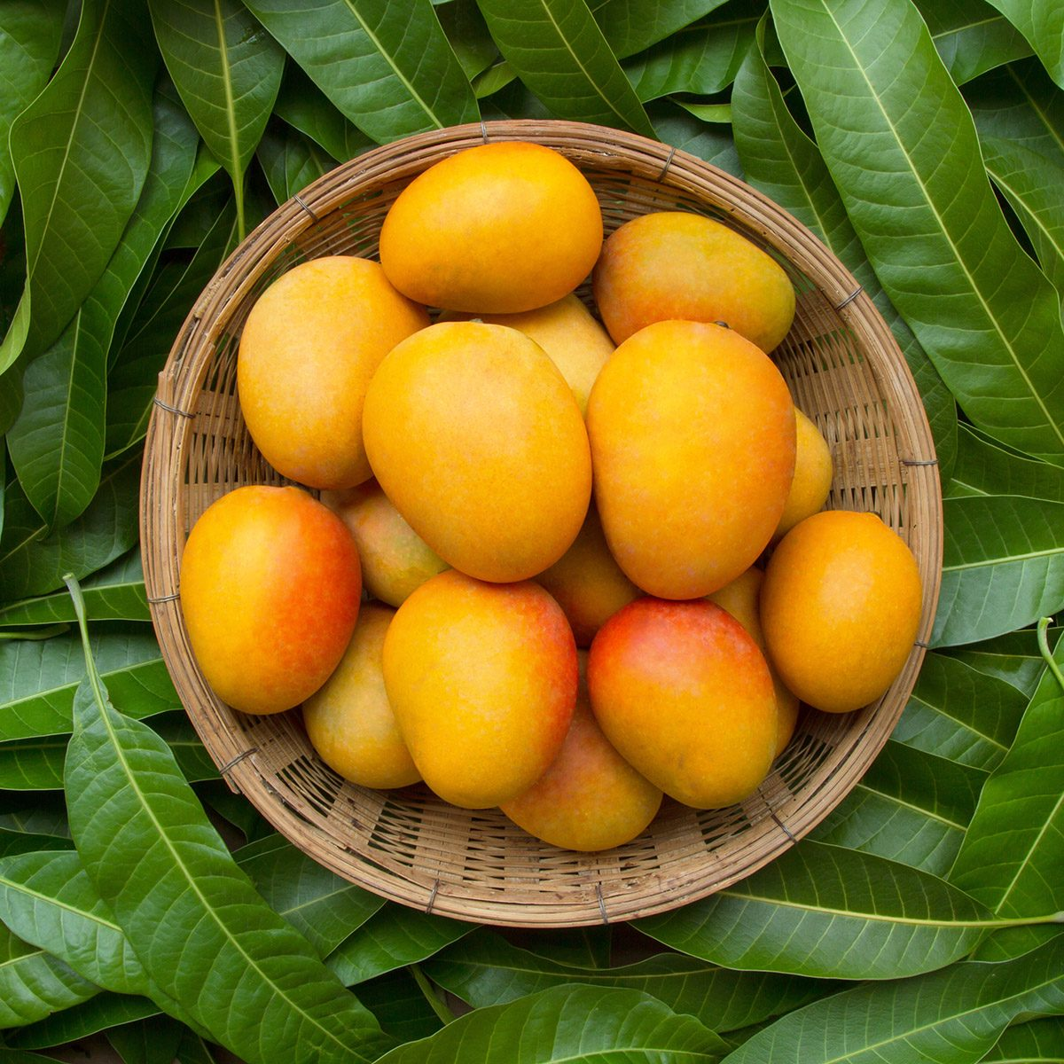 9 Benefits Of Mango That You Should Know Taste Of Home