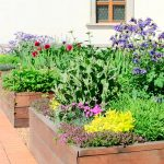 Pretty Edible Landscaping Ideas For Your Summer Garden Taste Of Home