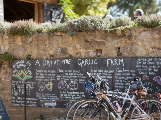 The Garlic Farm