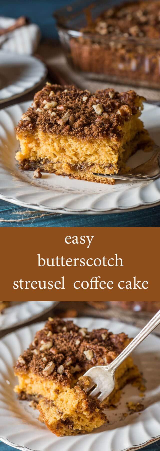 Easy Coffee Cake Recipe 9x13
