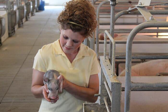 visiting-an-ohio-hog-farm-3