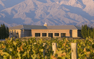 Argentina Wine Tour Salentein