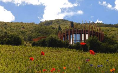 Chile Wine Tour Clos Apalta