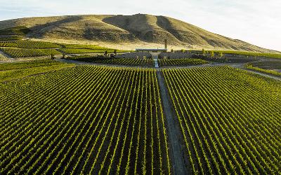 Washington Wine Tour