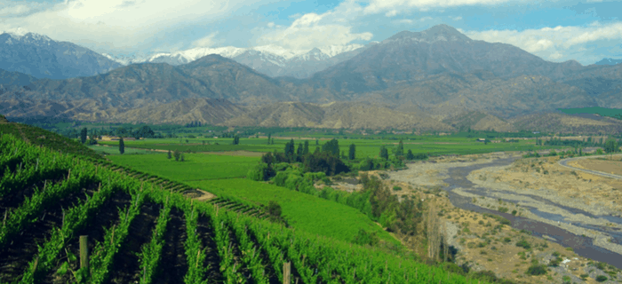 Reasons to Tour Chilean Wine Country