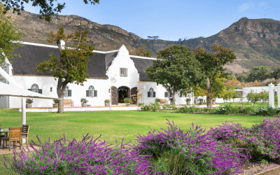 South Africa Wine Tour Steenberg