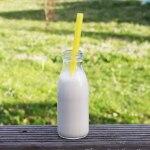 Faire ses laits végétaux avec le Chufamix ® #vegan